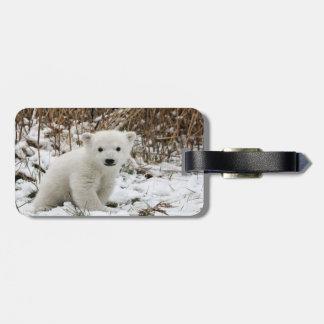 Baby Polar Bear Luggage Tag