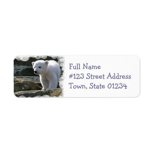 Baby Polar Bear Return Address Label