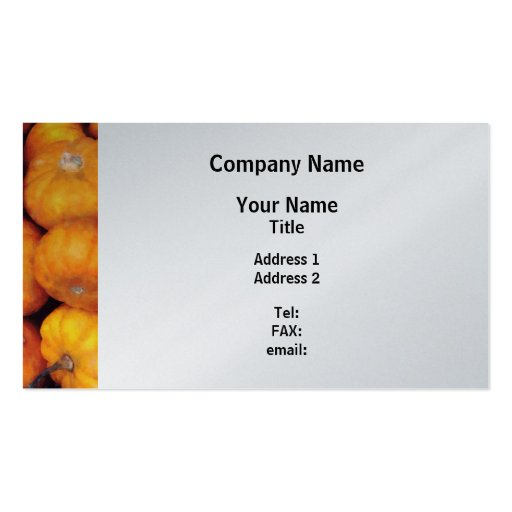 Baby Pumpkins - Platinum Finish Pack Of Standard Business Cards