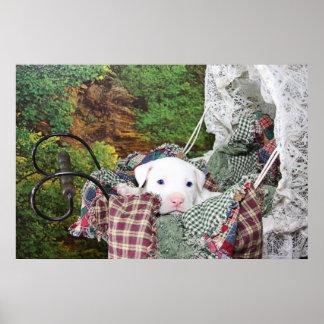 Baby Puppy Walk Poster