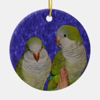 Baby Quaker Parrot Pair Bird Ornament