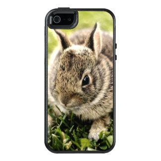 Baby Rabbit On Grass OtterBox iPhone 5/5s/SE Case