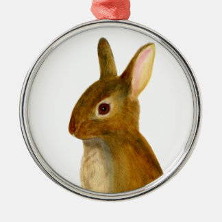 Baby Rabbit Watercolor Painting Wildlife Artwork Silver-Colored Round Decoration