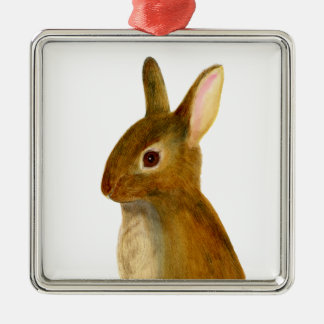 Baby Rabbit Watercolor Painting Wildlife Artwork Silver-Colored Square Decoration
