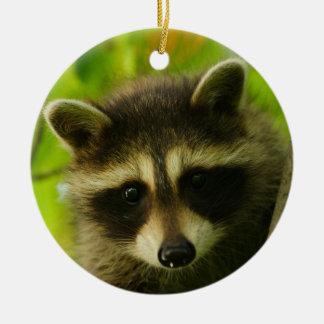 baby raccoon christmas ornament