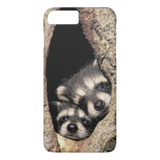 Baby raccoons in tree cavity Procyon iPhone 8 Plus/7 Plus Case