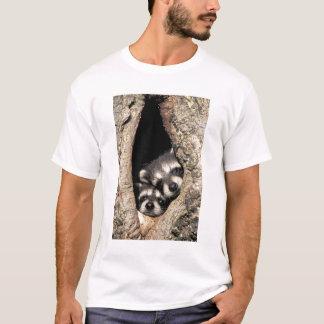 Baby raccoons in tree cavity Procyon T-Shirt