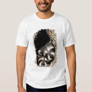 Baby raccoons in tree cavity Procyon Tshirts