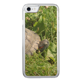 Baby Red Eared Slider Turtle Carved iPhone 8/7 Case
