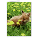 Baby Red Fox in Green Field With Yellow Flowers Note Card