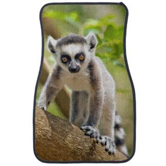 Baby ring-tailed lemur car mat