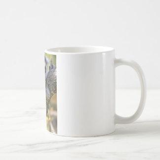 Baby Ring Tailed Lemur Coffee Mug