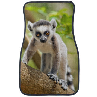 Baby ring-tailed lemur floor mat
