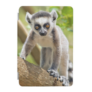 Baby ring-tailed lemur iPad mini cover