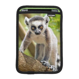 Baby ring-tailed lemur iPad mini sleeve