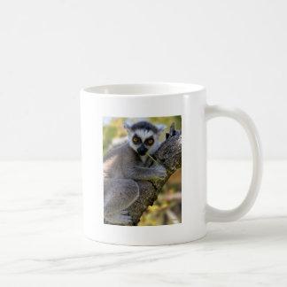 Baby Ring Tailed Lemur Mug