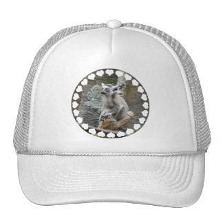 Baby Ringtailed Lemur  Baseball Hat