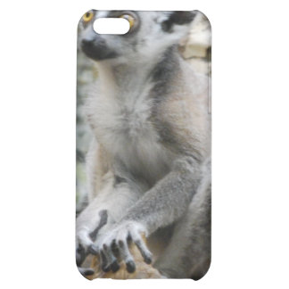 Baby Ringtailed Lemur iPhone 4 Case