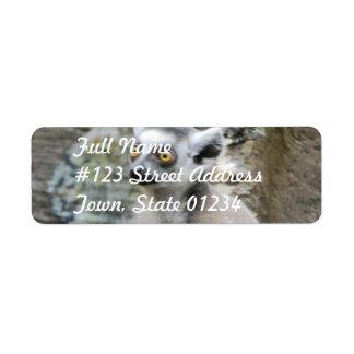 Baby Ringtailed Lemur Mailing Label Return Address Label