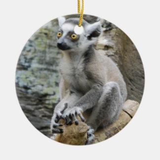Baby Ringtailed Lemur Ornament