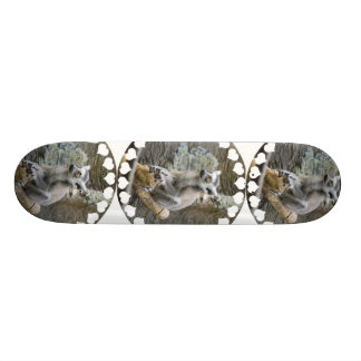 Baby Ringtailed Lemur Skateboard