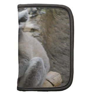 Baby Ringtailed Lemur Wallet Planners