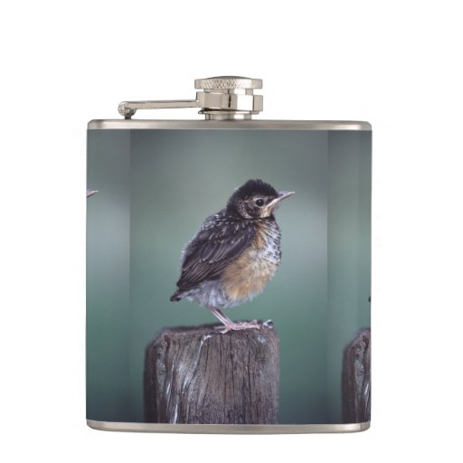 baby robin flask