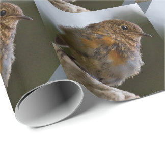 Baby Robin Wrapping Paper