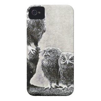 Baby Screech Owls Case-Mate Case iPhone 4 Cases