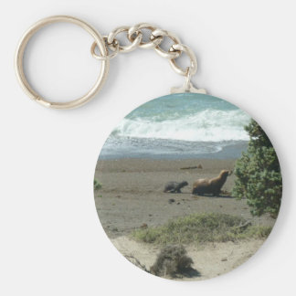 Baby sea lion and mother key ring