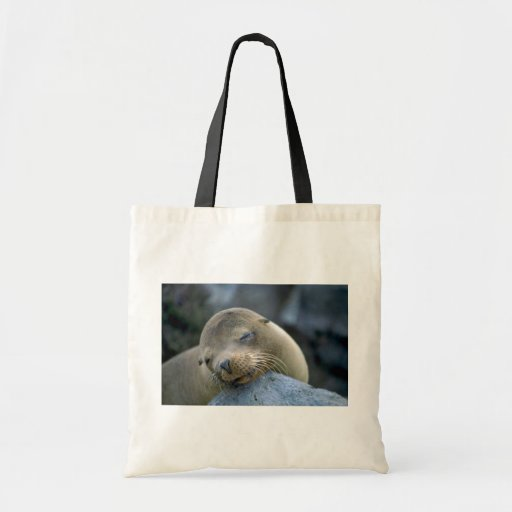 Baby sea lion, Galapagos Islands Bags