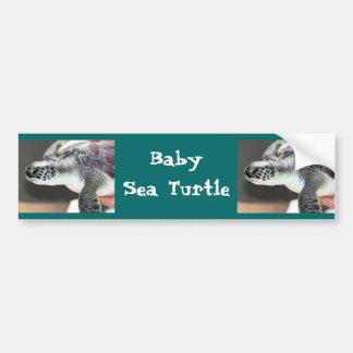 Baby Sea Turtle Bumper Sticker Car Bumper Sticker