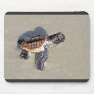 Baby Sea Turtle, Just Hatched Mouse Mat