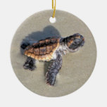 Baby Sea Turtle, Just Hatched Round Ceramic Decoration