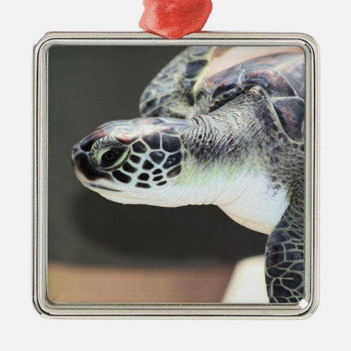 Baby Sea Turtle Silver-Colored Square Decoration