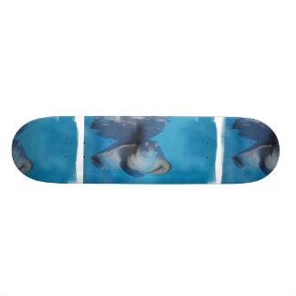 Baby Sea Turtle Skateboard