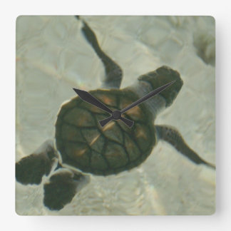 Baby Sea Turtle Swimming Out To Sea Wallclocks