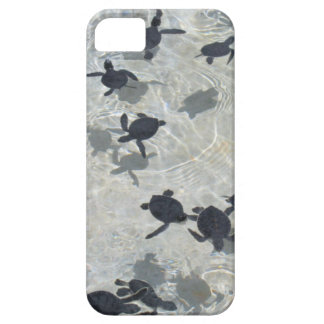 Baby  Sea Turtles iPhone 5 Cover