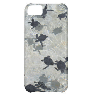 Baby  Sea Turtles iPhone 5C Case