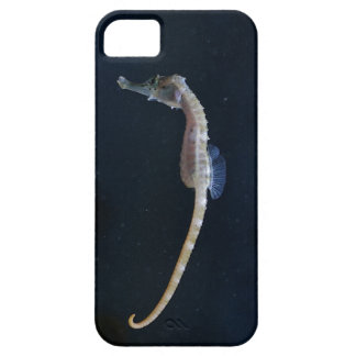 Baby Seahorse iPhone 5 Case