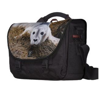 baby-seal-8.jpg laptop bags