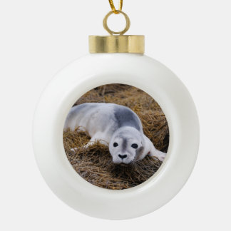 baby-seal-8.jpg ceramic ball ornament