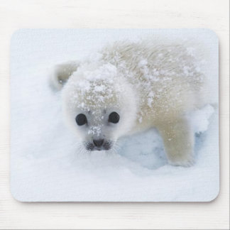 Baby Seal Mouse Mat