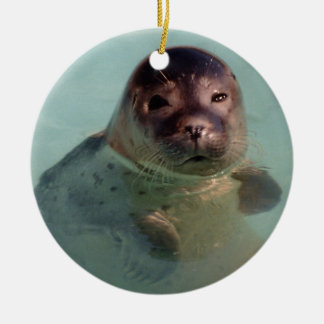Baby Seal Ornaemnt Christmas Ornament