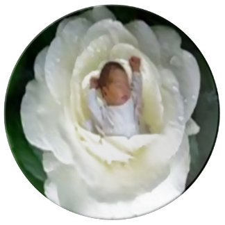 baby sleeping in rose porcelain plate 10.75""