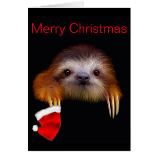 Baby Sloth Christmas Card
