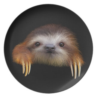 Baby Sloth Plate