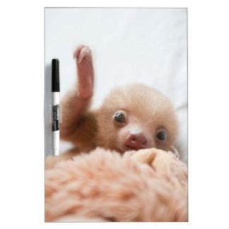 Baby Sloth Whiteboard
