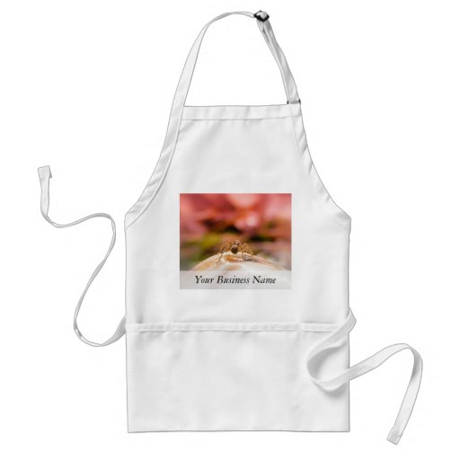 Baby Spider's First Day Apron