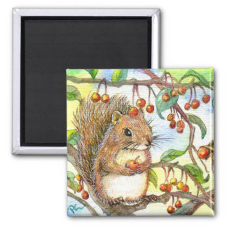 Baby Squirrel Magnet